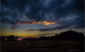 Sunrise on Chicnoteague